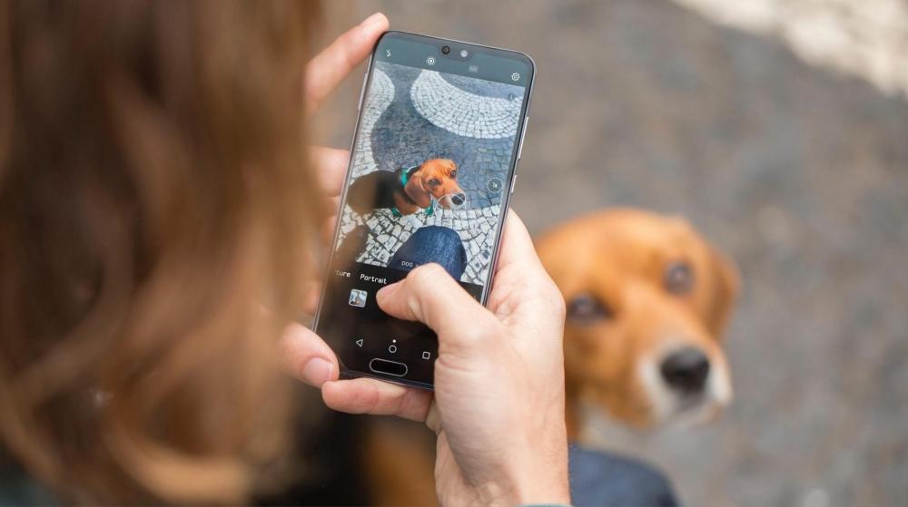 Huawei P20, maak de perfecte foto